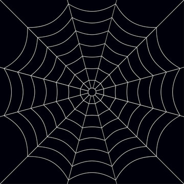 Halloween, spider web background - for stock