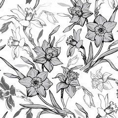 Monochrome botanical seamless pattern with hand drawn flowers daffodils