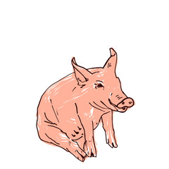 Black pig silhouette and pink grunge coloring