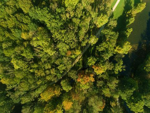 Road in autumn, Chamarande, Essonne, Ile-de-france, France