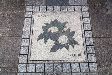 Japanese Sidewalk Art