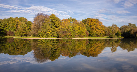 City park in Munich, Germany. Grass field, trees and reflections in a pond