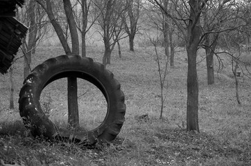 The Rubber Tire
