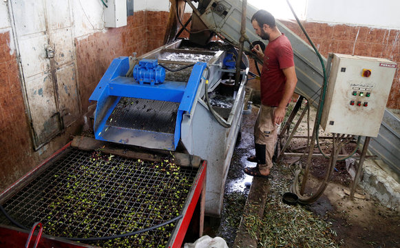 Palestinian man stands next to a machine as olive is pressed in a factory in Tubas