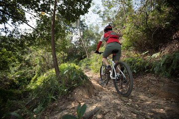 cyclist riding mountain bike on rocky trail at sunny day