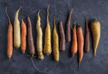 Colorful carrots arrange