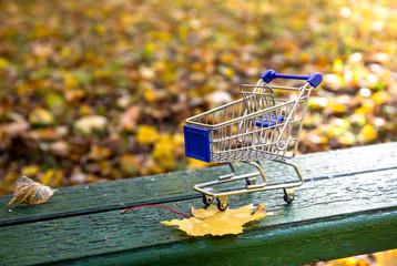 Shopping cart in the fall