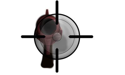 Gun shot target sight