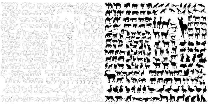 silhouette of wild and domestic animals, set