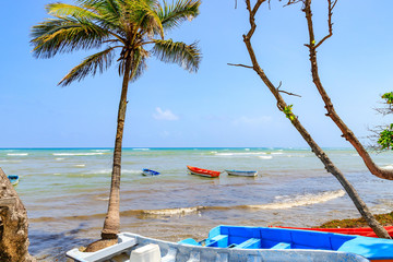 Fishing boats on the beach with palm trees. Malecon, Puerto Plata, Dominican Republic.