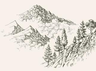 Alpine sketch, mountain ranges and coniferous vegetation