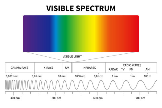 Visible light diagram. Color electromagnetic spectrum, light wave frequency. Educational school physics vector background. Illustration of spectrum diagram rainbow, infrared and electromagnetic