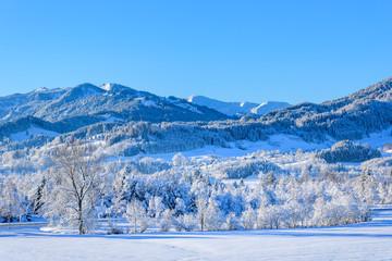 Wintermorgen im Oberallgäu bei Immenstadt