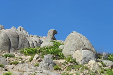 Funny rock formation resembling a duck at the beach of Spiaggia Su Giudeu, Sardinia, Italy
