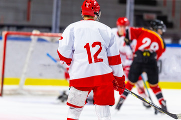 Ice hockey players during a hockey game