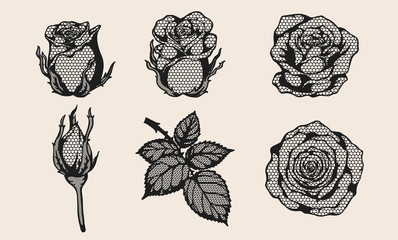 Rose lace vector set by hand drawing.Beautiful flower on brown background.Rose lace vector art highly detailed in line art style.Flower tattoo for paint or pattern.