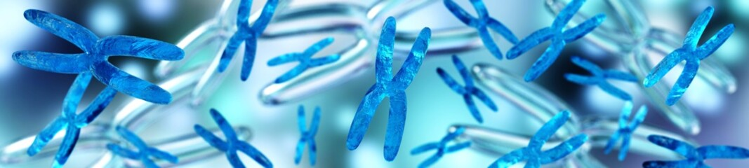 Chromosomes are many, banner,