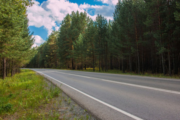 Road through green deep forest in Russia. Around green pines and blue sky, sunny day and autumn times