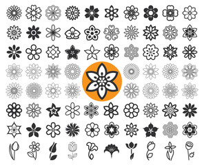 Set of flower icons and floral guilloche. Floriculture symbols. Vector illustration.