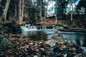 Forest river rapids in autumn day in Estonia