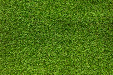 Gras, Wiese, Rasen, Hintergrund