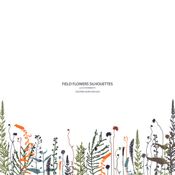 Vector silhouettes collection. Set of field herbs, flowers. Card design. Cover design.