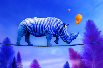 Blue Rhino walking on rope