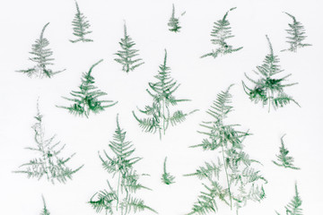 Christmas composition. Pattern made of coniferous tree branches on white background. Christmas, winter, new year concept. Flat lay, top view