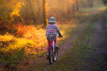 Fototapeta dziewczynka na rowerze w lesie. Piękna polska jesień obraz