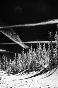 Infrared Winter Scene, Cedar Breaks National Monument