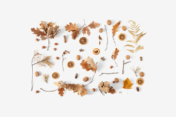 Top view dried leaves white background Autumn fall flat lay