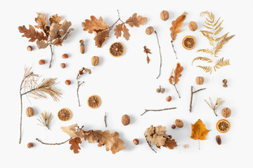 Top view frame dried leaves white background Autumn fall flat lay