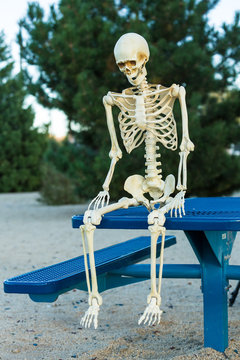 Depressed skeleton sits sadly on a picnic table alone