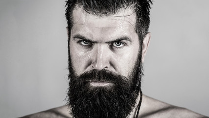 Handsome brutal male. Portrait of masculinity. Portrait brutal bearded man. Sexy closeup portrait of brutal handsome male, black beard. Sexy look of male. Hipster man with beard, sexy. Black and white