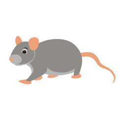 rat  vector illustration flat style profile side