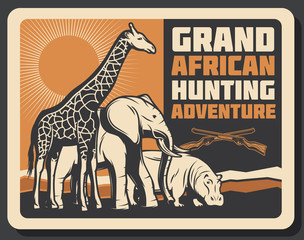 African Safari animals hunting, vector