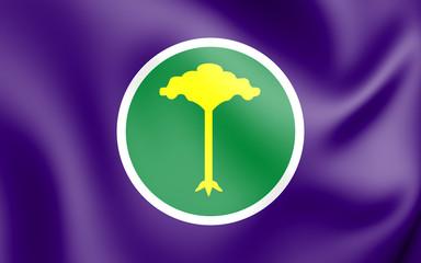3D Flag of Sao Carlos (Sao Paulo State), Brazil.