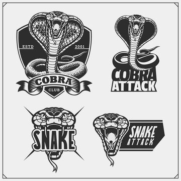 King cobra heraldry coat of arms. Labels, emblems and design elements for sport club.