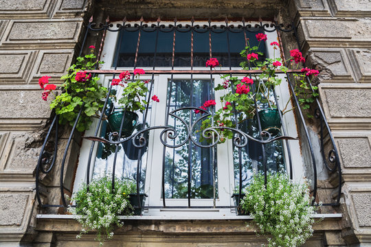 Barred window with red flowers