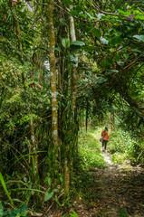 Female hikere on a jungle path