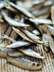 Sea sprat small fish close up on a newspaper, selective focus.