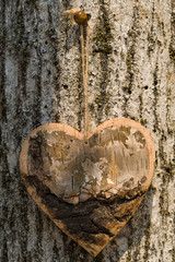 Wooden and rustic shape heart wooden hang up, on the bark of the tree