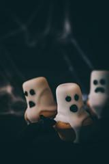 Geistermuffins für Halloween
