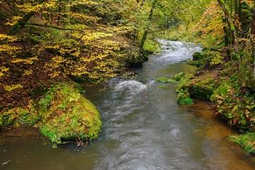 Foto auf Leinwand Fluss A beautifully river flowing autumn forest
