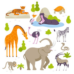 Wild animals in the zoo set of vector illustrations in flat design isolated on white background. Green bushes and trees around.