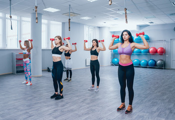 Beautiful young sports women pumping up muscles with dumbbells in gym.
