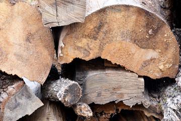 ağaç kütükleri