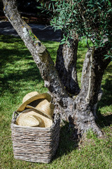 rustic straw hats in garden summer scene under tree portugal