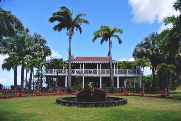Botanical Gardens in Nevis