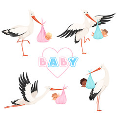 Stork with baby. Cute bird flying with newborn pacifier little children vector cartoon mascot funny poses. Illustration of stork with baby, newborn delivery